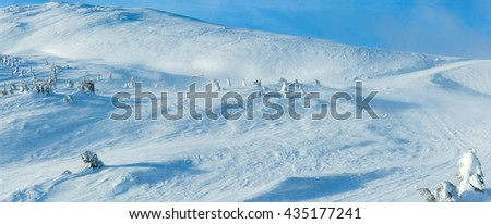 Ski run and snowy fir trees on winter morning hill in cloudy weather.