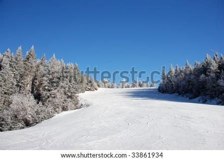 Ski slope on tree covered mountain side - stock photo