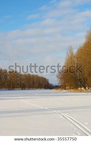 ski tracks in snow - stock photo