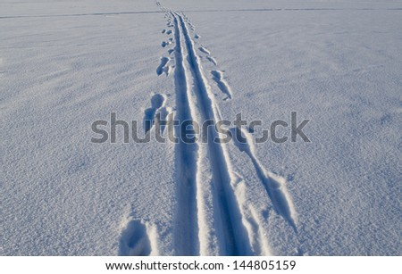 Ski tracks marks left on frozen lake snow in winter. Active recreation in nature. - stock photo