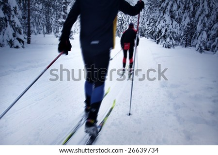 skier in a winter forest - stock photo