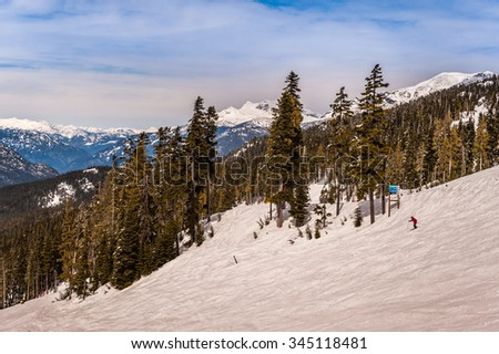Skiers going down the ski slopes with the Canadian Rocky Mountain forest in the background on a bright sunny day. - stock photo