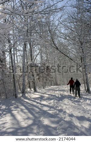 skiing on the forest lake - stock photo