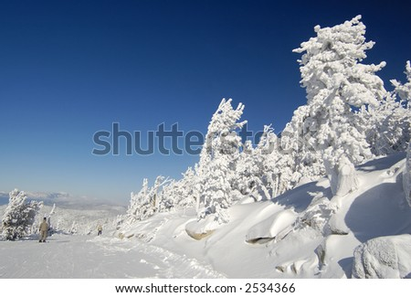 Skiing the frozen world on a frigid day at a ski resort at Lake Tahoe, California. - stock photo