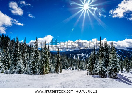 Skiing under blue skies, bright sun and around snow covered trees at the village of Sun Peaks in the Shuswap Highlands of British Columbia, Canada - stock photo