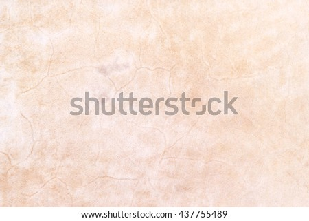 Skin of cow for drum background  - stock photo