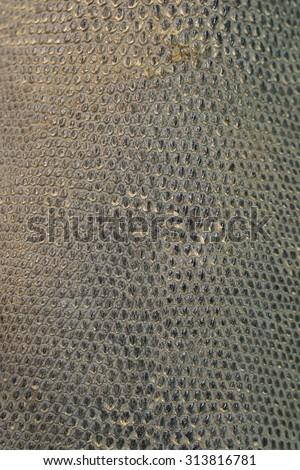 Skin textures of asian water monitor lizard (Varanus salvator) background. - stock photo