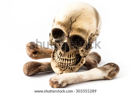 skull and bones on white background - stock photo