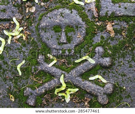 skull and cross bones on the tombstone - stock photo