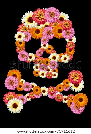 Skull flower - stock photo