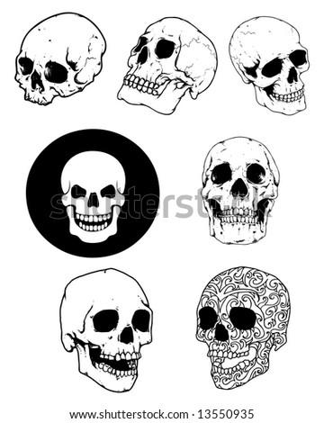 skull group image - stock photo