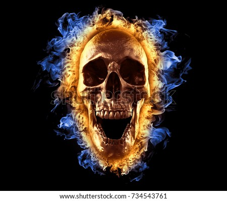 Skull In Fire Wallpaper 3d Illustration