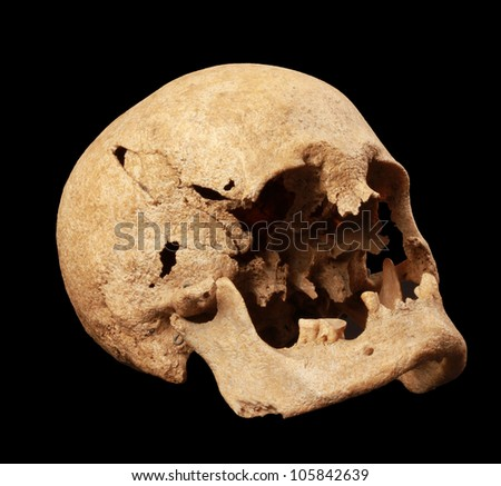 Skull of a ancient human black isolated - stock photo