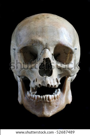 Skull of the person close up on a black background - stock photo