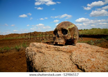 skull on a rock against the sky - stock photo