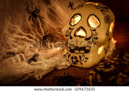 Skull on a wooden table covered in spider webs and spiders with a candle lighting the inside of the skull and giving enough light to see the walnuts and spiders on the table - stock photo