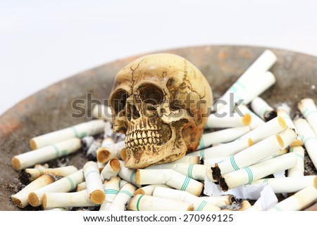Skull on cigarette - stock photo