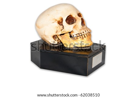 Skull on small casket isolate on white background - stock photo