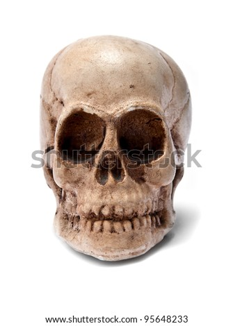 skull on white background, beware of death