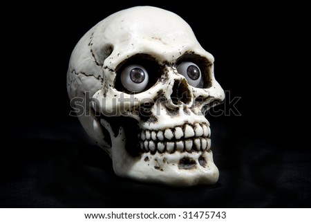 skull with black background - stock photo