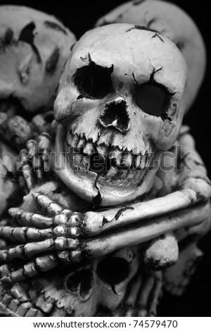 Skulls and bones - stock photo