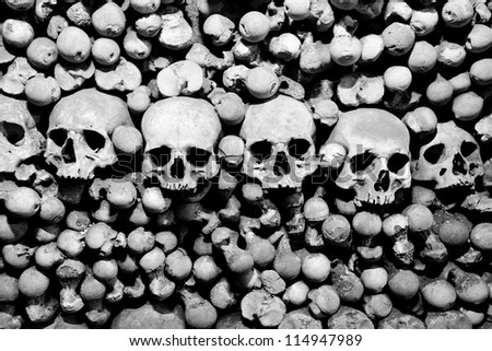 Skulls and bones. Black and white image. - stock photo