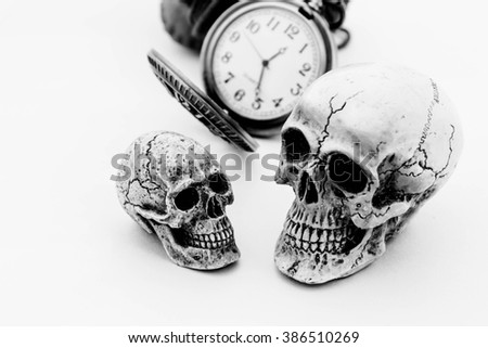 Skulls couple with vintage pocket watch on white background,Concept love and time - stock photo