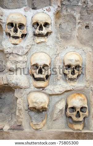 Skulls from skull tower in Nis - Serbia