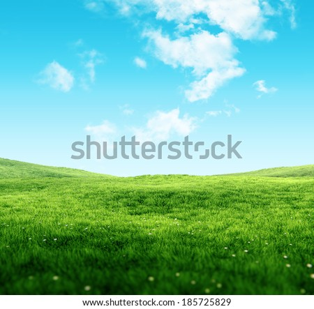 Sky and grass background, fresh green fields under the blue sky in spring