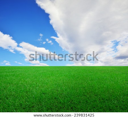 Sky and grassland with perspective - stock photo