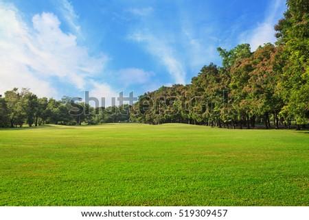 Sky Green Grass Field City Park Stock Photo Royalty Free Royalty