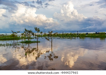 Sky and trees reflected in the Amazon River in the late afternoon near Leticia, Colombia - stock photo