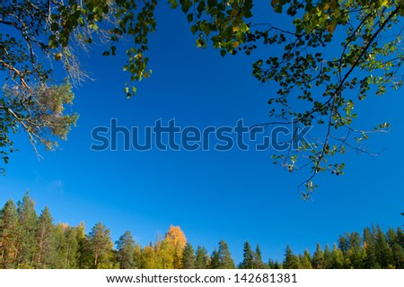 Sky framed by trees in autumn - stock photo
