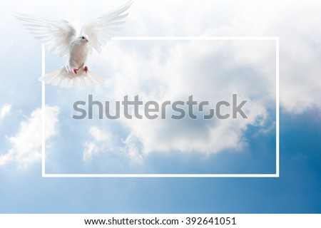 Sky Funeral Background - stock photo