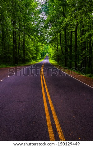 Skyline Drive in a heavily shaded forest area of Shenandoah National Park, Virginia. - stock photo