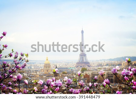 skyline of Paris city roofs with Eiffel Tower at spring day with tree bloom, Paris, France, retro toned
