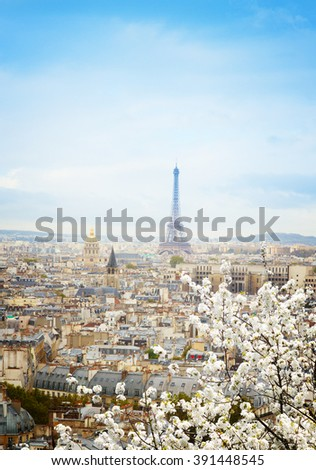 skyline of Paris city roofs with Eiffel Tower from above with spring blooming tree, France, retro toned