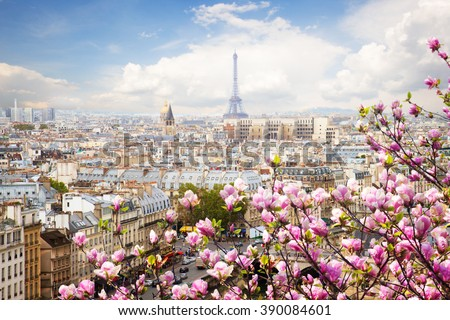 skyline of Paris city roofs with Eiffel Tower  with blooming magnolia spring tree, Paris, France - stock photo