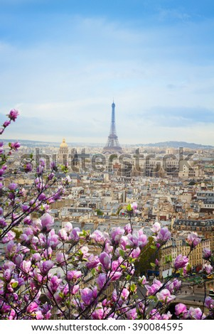 skyline of Paris city roofs with Eiffel Tower with spring magnolia tree, France - stock photo