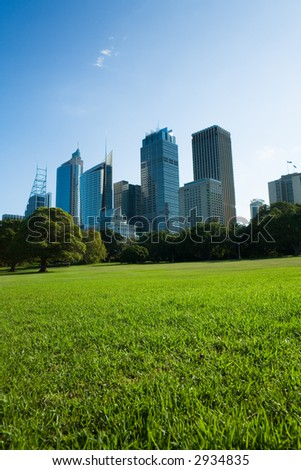 Skyscrapers and blue sky fill the background behind beautiful green grass and trees. This photo was taken at the Royal Botanical Gardens park in Sydney, Australia.