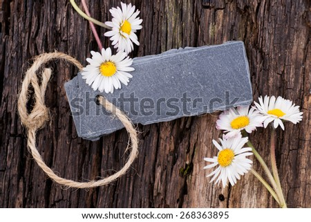 Slate and daisy flowers - stock photo