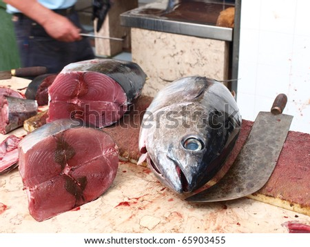 Slaughted Tuna - stock photo