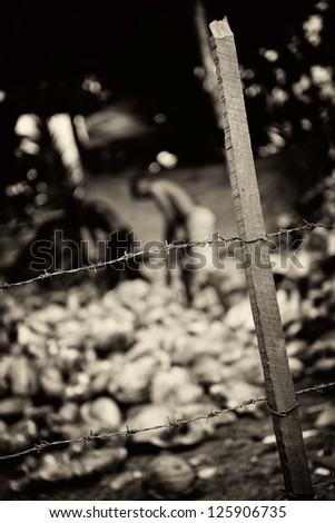 Slavery. Monochrome toned. The men behind barbed wire are working on putting coconuts - stock photo