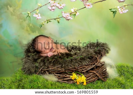 Sleeping african baby in a springtime or easter nest - stock photo