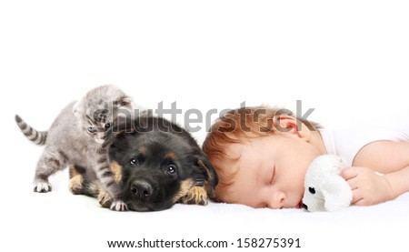 Sleeping Baby Boy with toy dog, puppy and kitten. - stock photo
