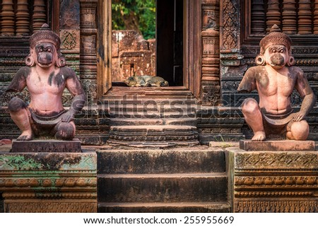 Sleeping cat guarded by statues in Ancient temple ruins of Banteay Srei, Cambodia - stock photo