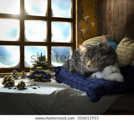Sleeping cat on winter window background concept composition 3d render