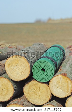 Sleeping mat among the stumps of trees, Poland - stock photo