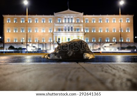 Sleeping street dog near Greek Parliament at night, Athens - stock photo