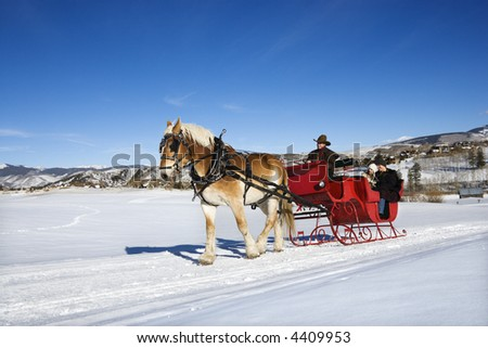 Sleigh ride through winter landscape.